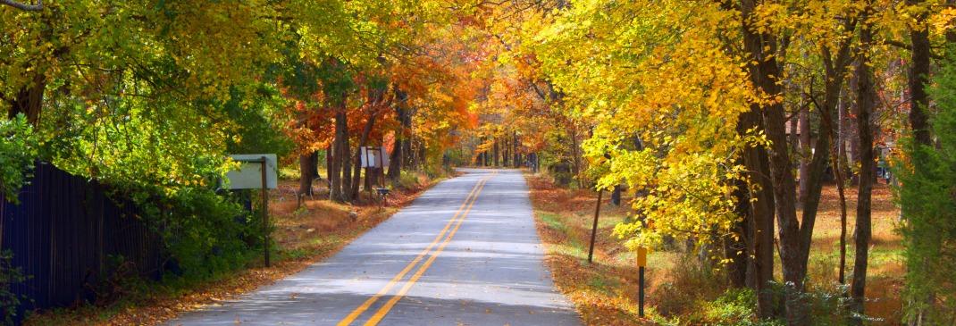 Guidare nei dintorni dell'Arkansas