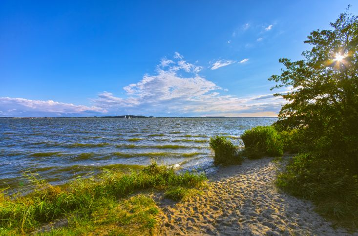 Strand an der Mecklenburgischen Seenplatte.