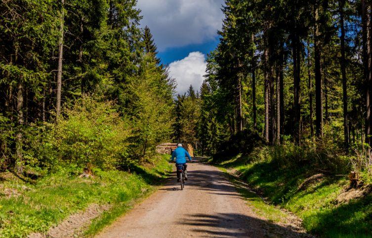 Fahrradweg im Thüringer Wald