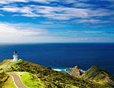 A Fun-Filled Coastal Drive from Auckland to Gisborne