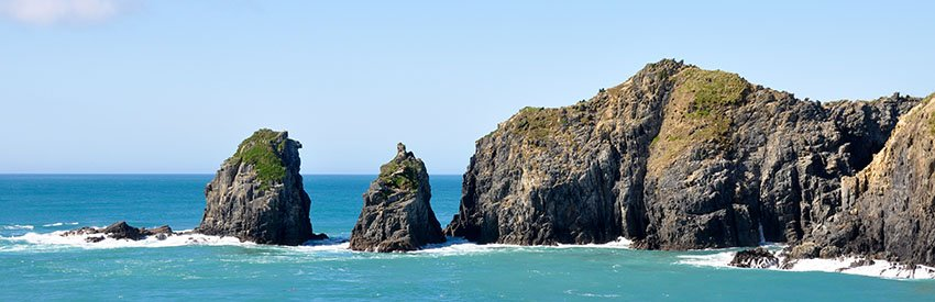 3 of Auckland's best islands to visit banner