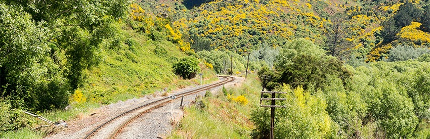 Taieri Gorge Railway banner