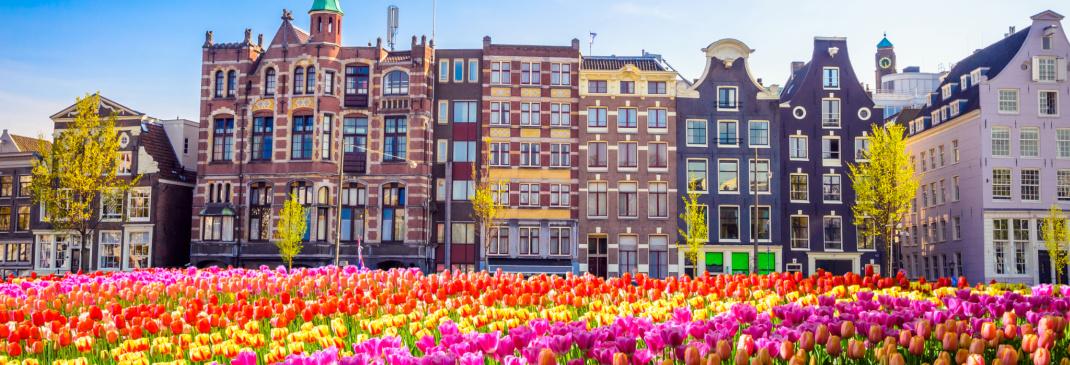 En korte gids voor Nederland
