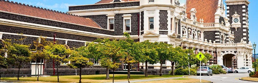Top things to see and do in Dunedin banner