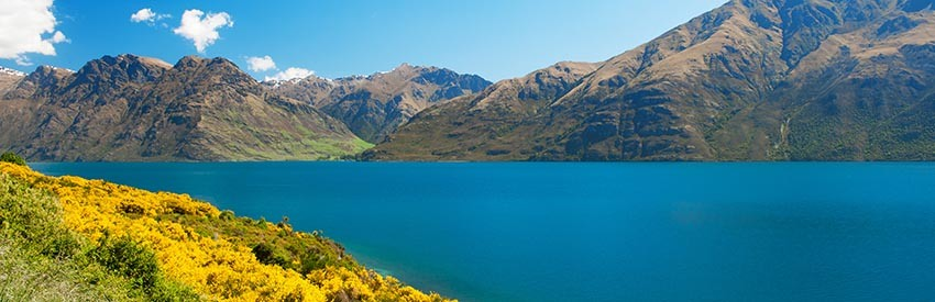 fly fishing around queenstown new zealand. Black Bedroom Furniture Sets. Home Design Ideas