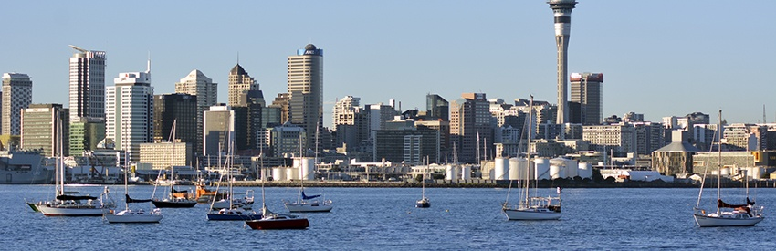 The Unmatched Benefits Of Auckland Car Hire banner