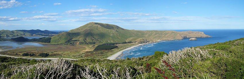 The best gardens to visit in Dunedin with a car hire banner
