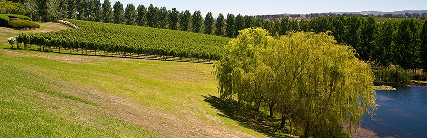 Take a drive in a Hertz Melbourne - Yarra Valley banner