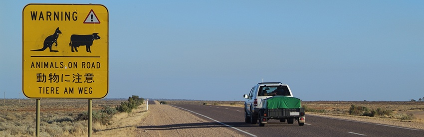Drive the Stuart Highway from Darwin to Alice Springs with a car rental banner