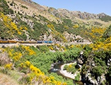 A guide to the Otago Rail Trail