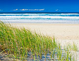 What's on in the Gold Coast with a Gold Coast Car Hire
