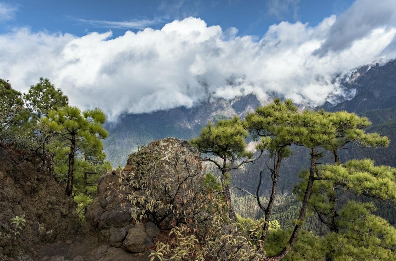 Aussicht von La Cumbrecita in La Palma