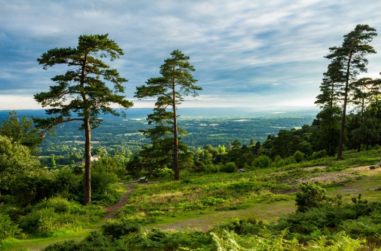 Die Landschaft um Surrey bei London