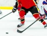 Original Six: Der NHL-Reiseführer