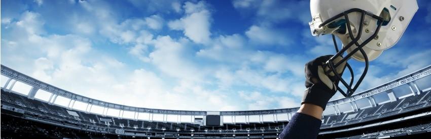 Fünf NFL-Ausflüge, die Sie sich leisten können banner