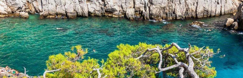 Découvrez la beauté des Calanques de Marseille banner