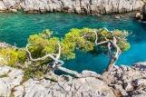 Découvrez la beauté des Calanques de Marseille
