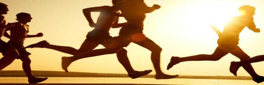 Rimini Wellness 2016: fitness allo stato puro banner