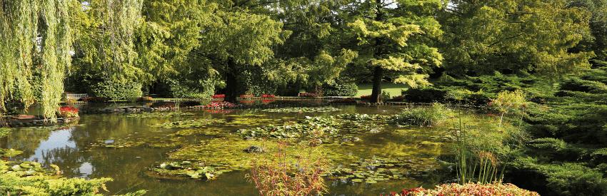 Parco Giardino Sigurtà: un paradiso per gli amanti della natura banner
