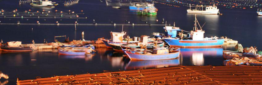 Dal golfo di Taranto alle Gravine banner