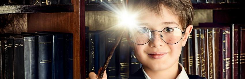 La magie du festival Harry Potter de Chestnut Hill, PA banner