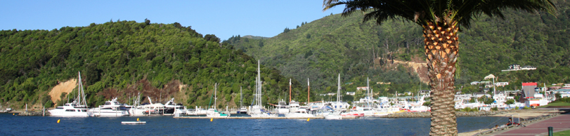 Car Rental Picton