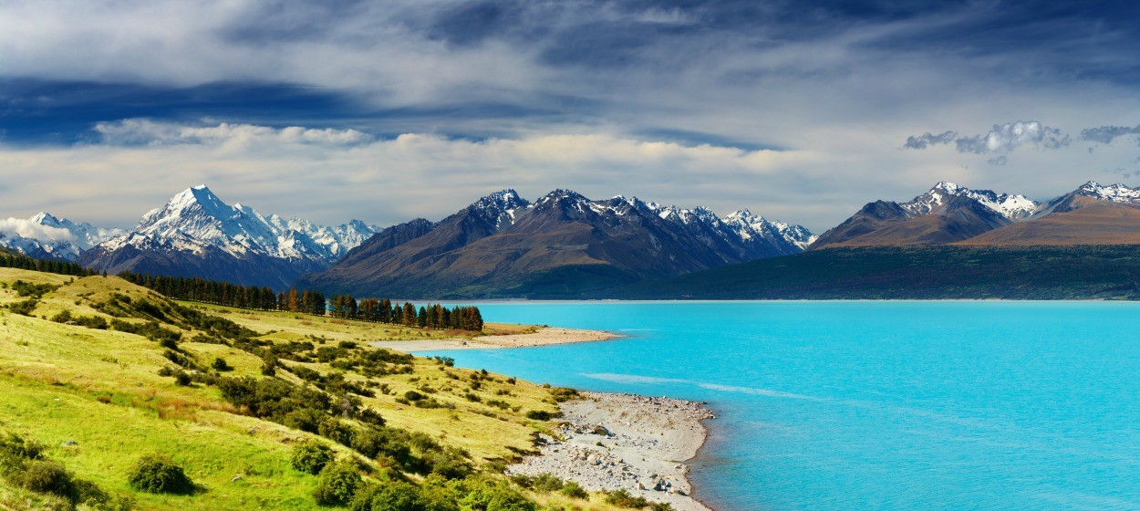 Car Rental New Zealand Requirements