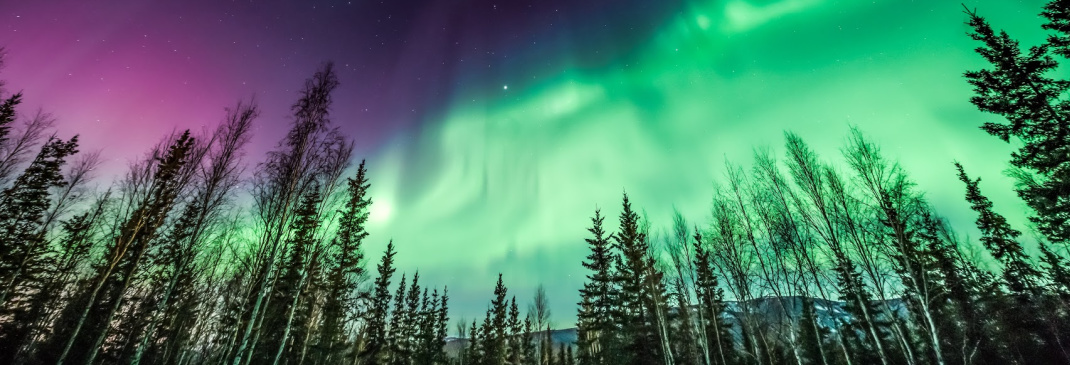 A quick guide to Fairbanks