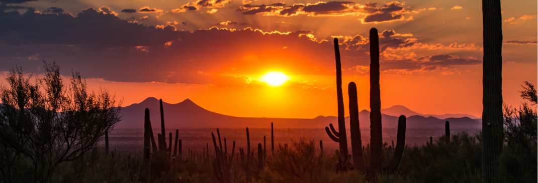A quick guide to Tucson