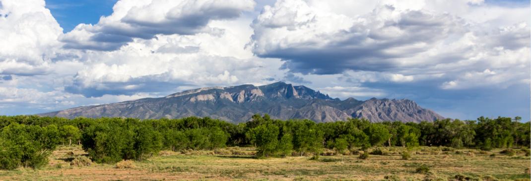 A quick guide to Albuquerque